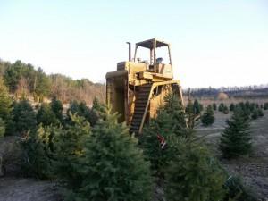 Tree Digger