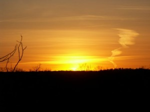 Sunset Glen Williams